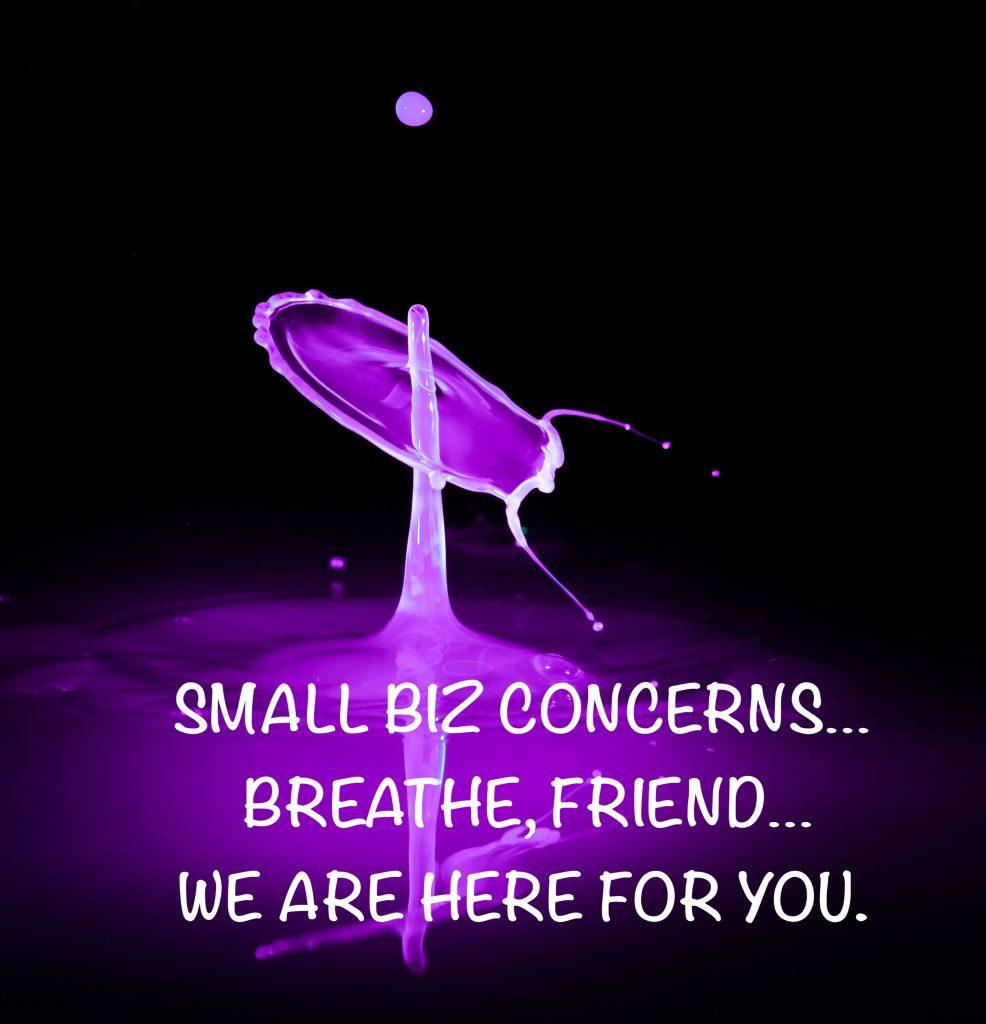 Small business concerns - covid 19 - corona